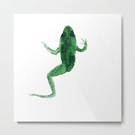 Study of a frog #02 Metal Print