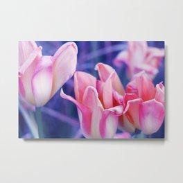 Tulip Dreams in Soft Rose Metal Print