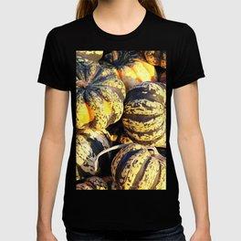 Close Up Stripey Pumpkins T-shirt