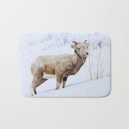 Big Horn Sheep in the Snow Bath Mat