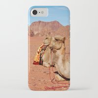 camel iPhone & iPod Cases featuring camel by lularound