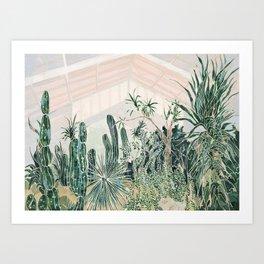 Cactus garden (2) Art Print