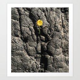 Blackened Earth Art Print