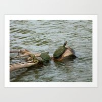 turtles Art Prints featuring turtles by Dantastic Photos