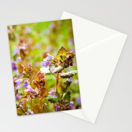 Ground Ivy Stationery Cards
