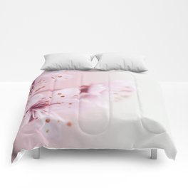 Cherry Blossoms Comforters