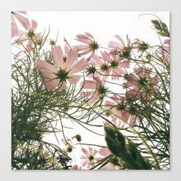 FLOWER 044 Canvas Print
