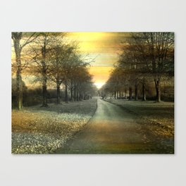 A winters day. Canvas Print