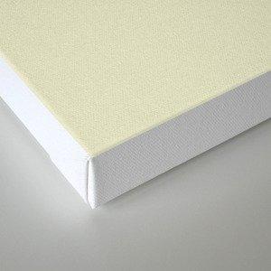 Delusion (2) Canvas Print