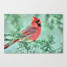 Christmas Cardinal Canvas Print
