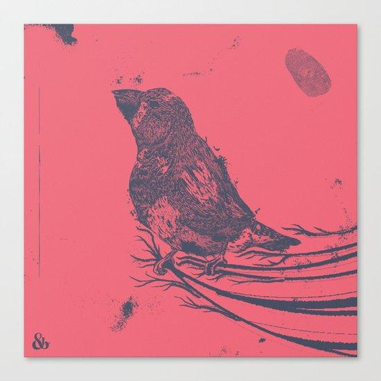 Finch Origin of Species Canvas Print