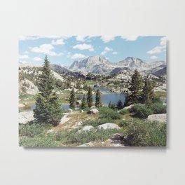 Wyoming Summer Metal Print