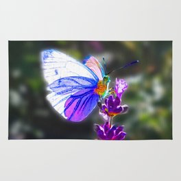 Butterfly on the Lavender Rug