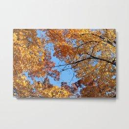 Amazing Autumn Sky Metal Print