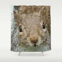 The other faces of Squirrel 2 Shower Curtain