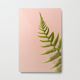 Fern Study On Pink #2 Metal Print