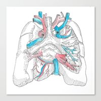 lungs Canvas Prints featuring lungs by Megan
