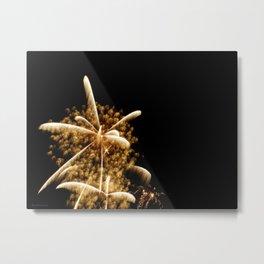 Fairy Dust Metal Print