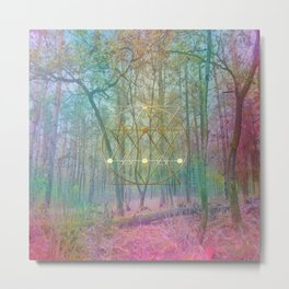 Magic of the Woods Metal Print