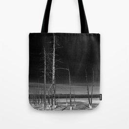 Lodgepole Pines Tote Bag