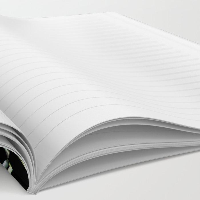 Triple Ts Fractal Notebook