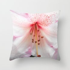 Light pink azalea or rhododendron flower. floral botanical garden photography. Throw Pillow