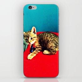 Kitters iPhone Skin