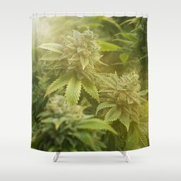 Denver Flowers Shower Curtain