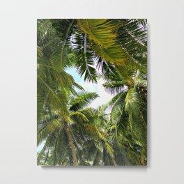 Maldivian palm Metal Print