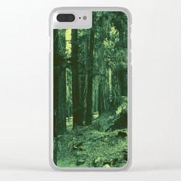 0414 Clear iPhone Case