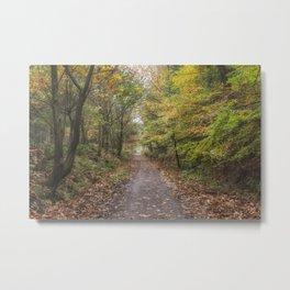 Autumn Cycle Path Metal Print