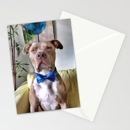 Bean in a bowtie Stationery Cards