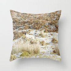 Under the Winter's Sun Throw Pillow