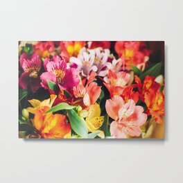 Large colorful bouquet of alstomerias Metal Print