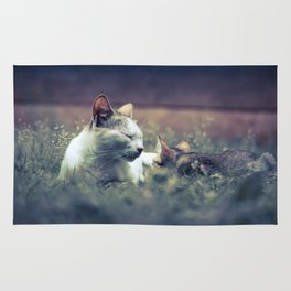 cat and kitten Rug