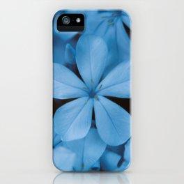 Jazmin del Cielo II iPhone Case