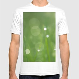 Water droplets in a grass field by the morning T-shirt