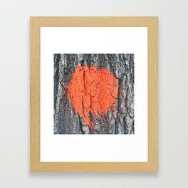 NVSV SPCS_orange blaze Framed Art Print