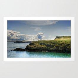 Skomer Island Art Print
