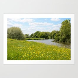 Summer meadow and river Art Print