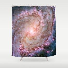Twins of Superstar Eta Carinae Shower Curtain