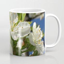 Spring Time Cherry Blossom Coffee Mug