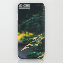 The road up hill iPhone Case