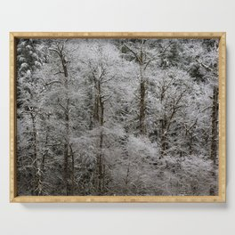 Snow Dusted Trees, No. 2 Serving Tray