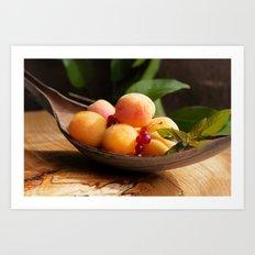 Fresh Apricots on Tabel Art Print