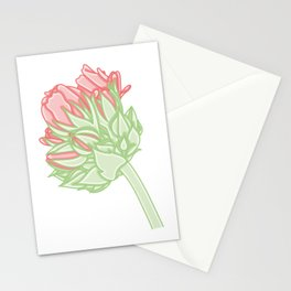 Zonal Geranium Illustration Stationery Cards
