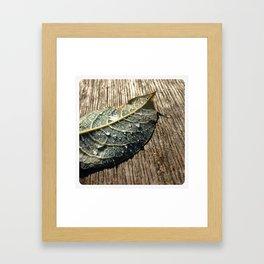 waterdrops Framed Art Print