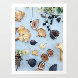 Fig & Chanterelle II Art Print