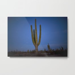 Desert night in Baja California Metal Print