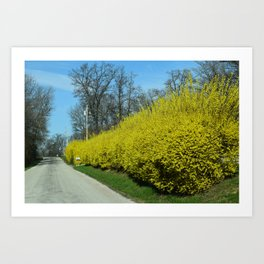 Lovely Lane Art Print